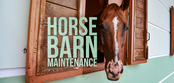 9 Horse Barn Maintenance Tips for First-Time Horse Owners